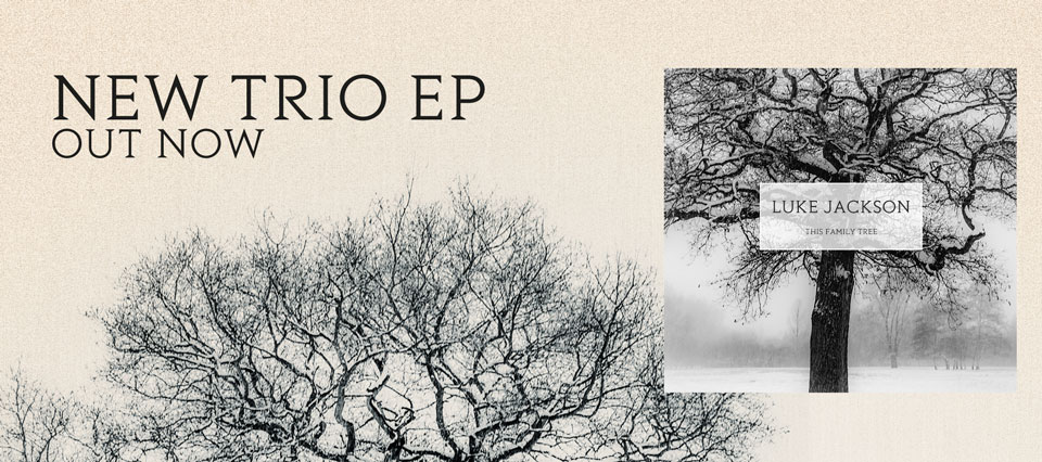 New album This Family Tree - OUT NOW