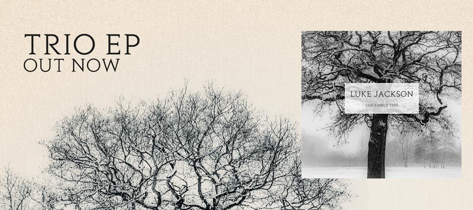 This Family Tree - Trio EP out now